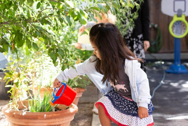 At Trimont Schools we support the natural learning of children through observation, exploration and discovery.
